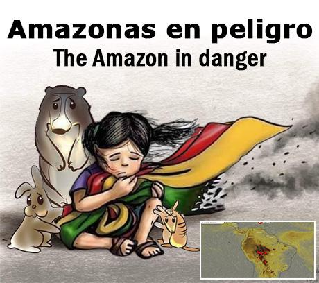Amazonas Bolivia Brasil