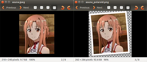 Efecto polaroid en linux